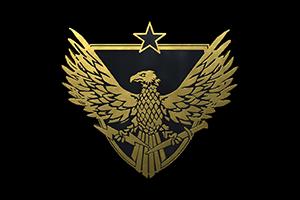 Brigadier General Pin