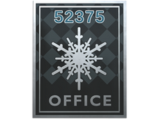 Skin Office Pin