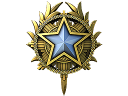 2020 Service Medal