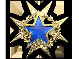 2015 Service Medal