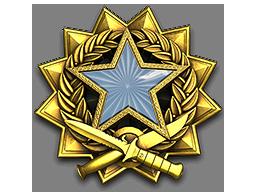 2017 Service Medal