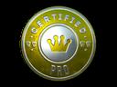 Sticker   The Pro (Foil)