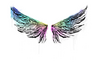 Sealed Graffiti   Wings