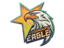 Skin Sticker | Legendary Eagle (Holo)