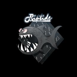 Black Jaggyfish