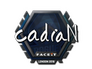 Skin Sticker | cadiaN | London 2018