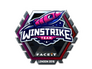 Skin Sticker | Winstrike Team (Foil) | London 2018