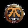 Sticker   Fnatic   Katowice 2019