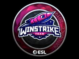 Sticker | Winstrike Team (Foil) | Katowice 2019