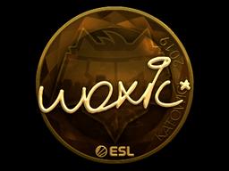 woxic | Katowice 2019