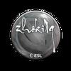 Sticker   zhokiNg   Katowice 2019