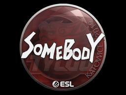 Sticker | somebody | Katowice 2019