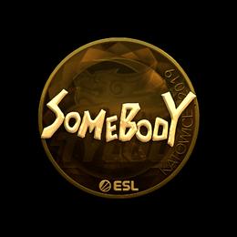 somebody (Gold) | Katowice 2019