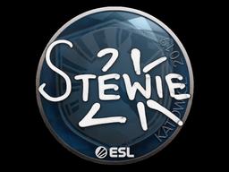 Наклейка | Stewie2K | Катовице 2019