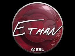 Наклейка | Ethan | Катовице 2019
