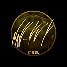 NAF (Gold) | Katowice 2019