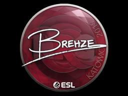 Наклейка | Brehze | Катовице 2019