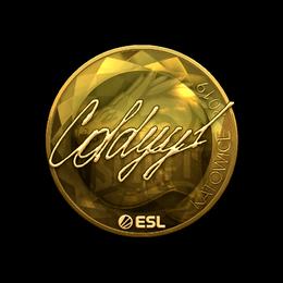 COLDYY1 (Gold) | Katowice 2019