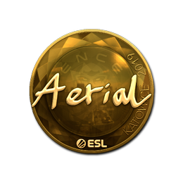 Aerial (Gold) | Katowice 2019
