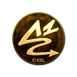 ANGE1 (Gold) | Katowice 2019