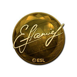 flamie (Gold) | Katowice 2019