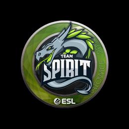Team Spirit | Katowice 2019