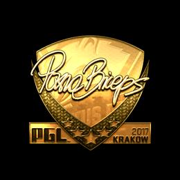 pashaBiceps (Gold) | Krakow 2017
