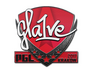 Skin Sticker | gla1ve | Krakow 2017