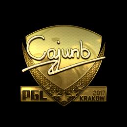 cajunb (Gold) | Krakow 2017