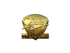 Skin Sticker | cajunb (Gold) | Krakow 2017