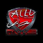 Sticker | allu (Foil) | Krakow 2017