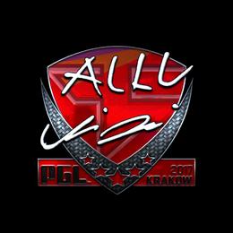 allu (Foil) | Krakow 2017