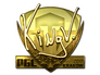 Skin Sticker | kNgV- (Gold) | Krakow 2017