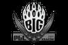 Sticker | BIG | Krakow 2017