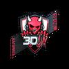 Sticker | 3DMAX <br>(Foil) | Katowice 2015