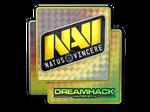 Natus Vincere | DreamHack 2014