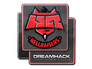 Skin Sticker | HellRaisers | DreamHack 2014