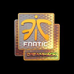 Fnatic (Holo) | DreamHack 2014