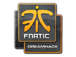 Sticker Fnatic | DreamHack 2014