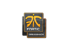 Skin Sticker | Fnatic | DreamHack 2014