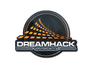 Skin  DreamHack Winter 2014