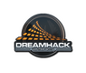 DreamHack 2014 | In-Game Shop