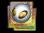Team Dignitas | DreamHack 2014