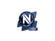 Skin Sticker | Team EnVyUs | Atlanta 2017
