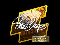 pashaBiceps | Atlanta 2017