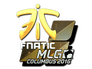 Skin Sticker | Fnatic (Foil) | MLG Columbus 2016