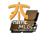 Skin Sticker | Fnatic | MLG Columbus 2016