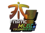 Skin Sticker | Fnatic (Holo) | MLG Columbus 2016