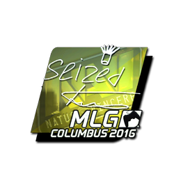 seized (Foil) | MLG Columbus 2016