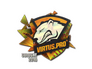 Skin Sticker | Virtus.Pro (Holo) | Cologne 2016